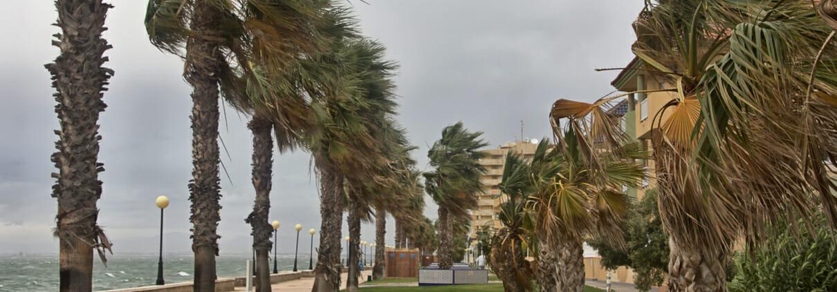 Hurricane Hanna Insured Losses Reach Nearly $350 Million