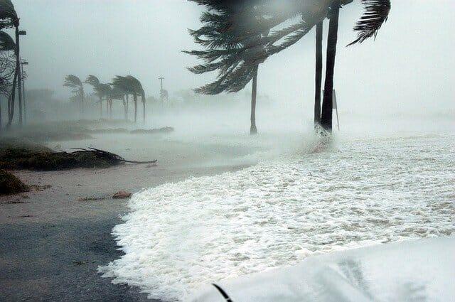 Hurricane Laura Storm Surge